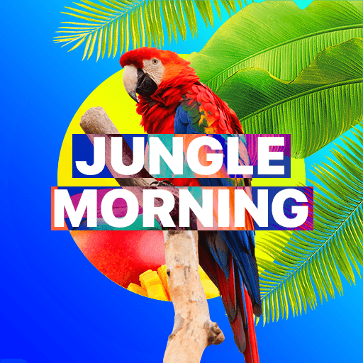 Jungle Morning