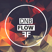 DnB Flow