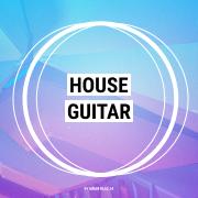 House Guitar