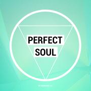 Perfect Soul