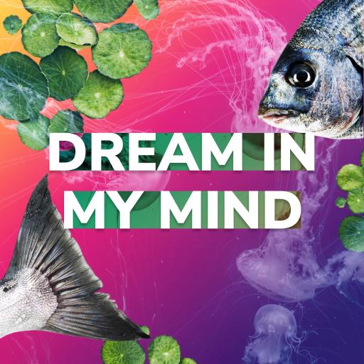 Dream In My Mind